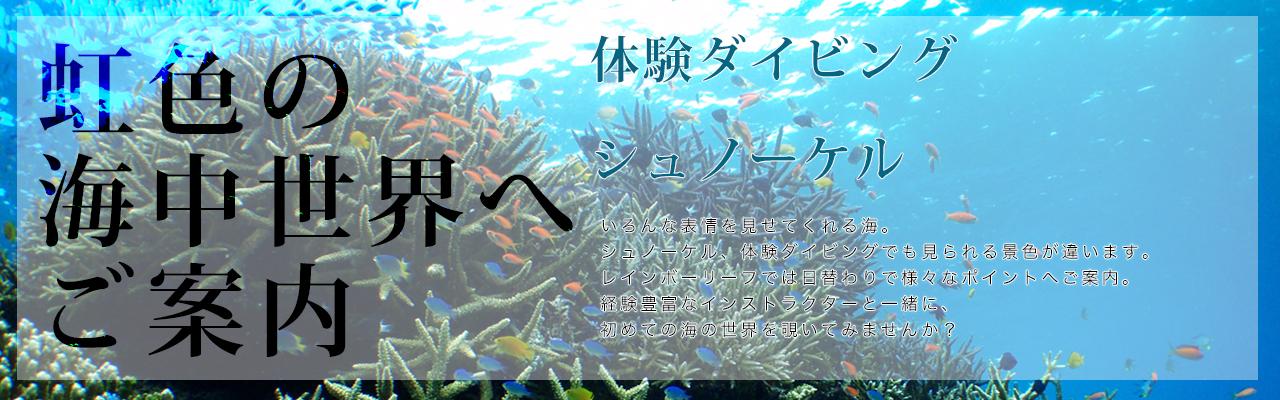 虹色の海中世界へご案内