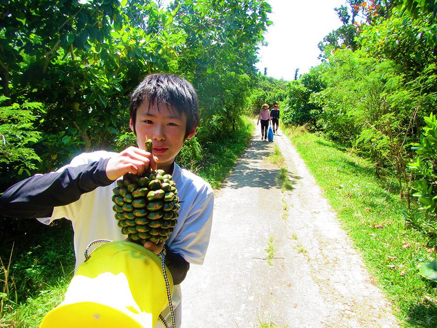 幻の島上陸半日コース4